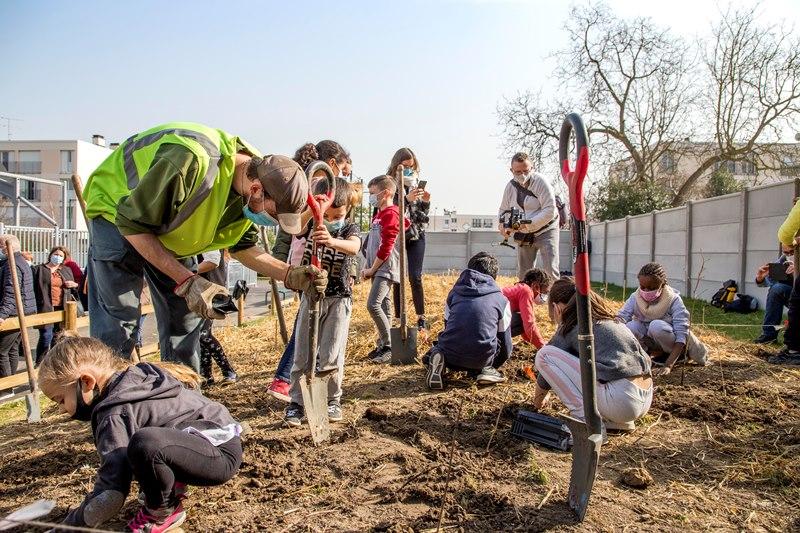 Plantation de la forêt urbaine à Sannois