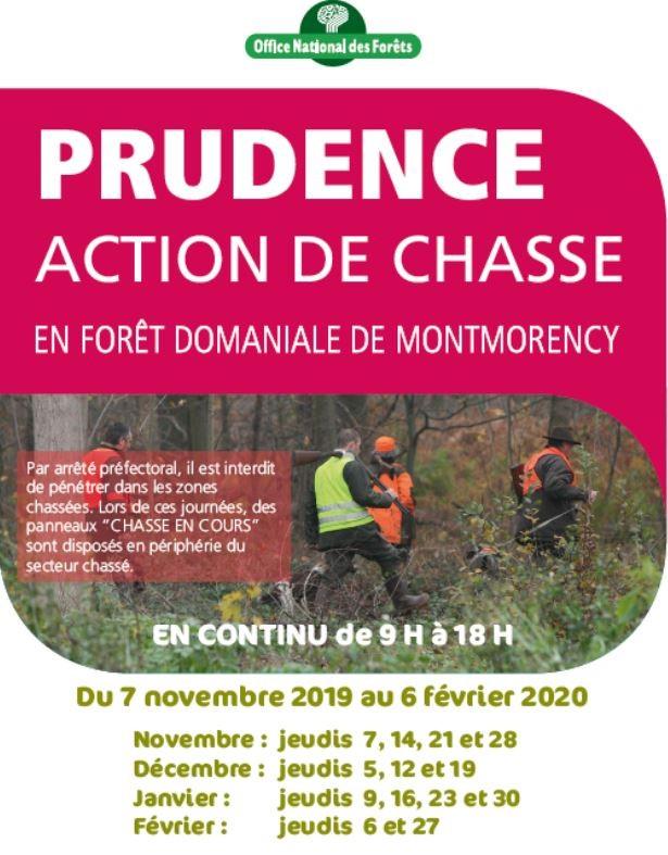 Actions de chasse en Forêt de Montmorency - 2019 - 2020