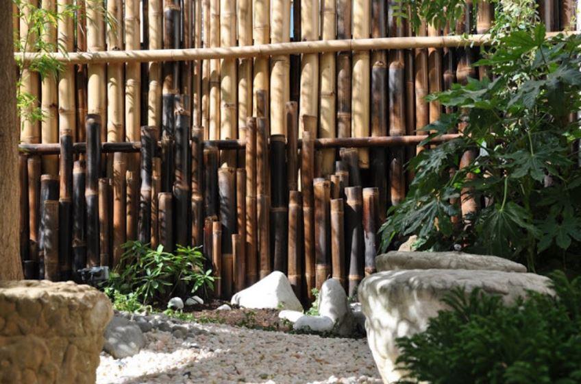 Causons jardin les rendez vous de st phanie taffin for Jardinerie des jardins