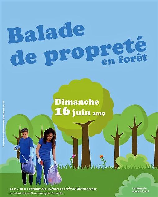 Balade de proprété en Forêt de Montmorency