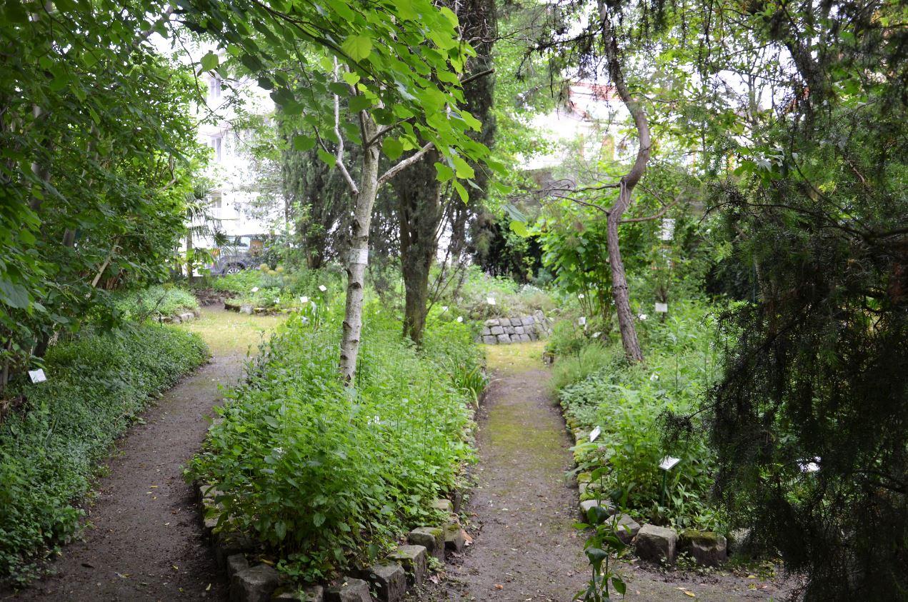 Jardin botanique de Sannois