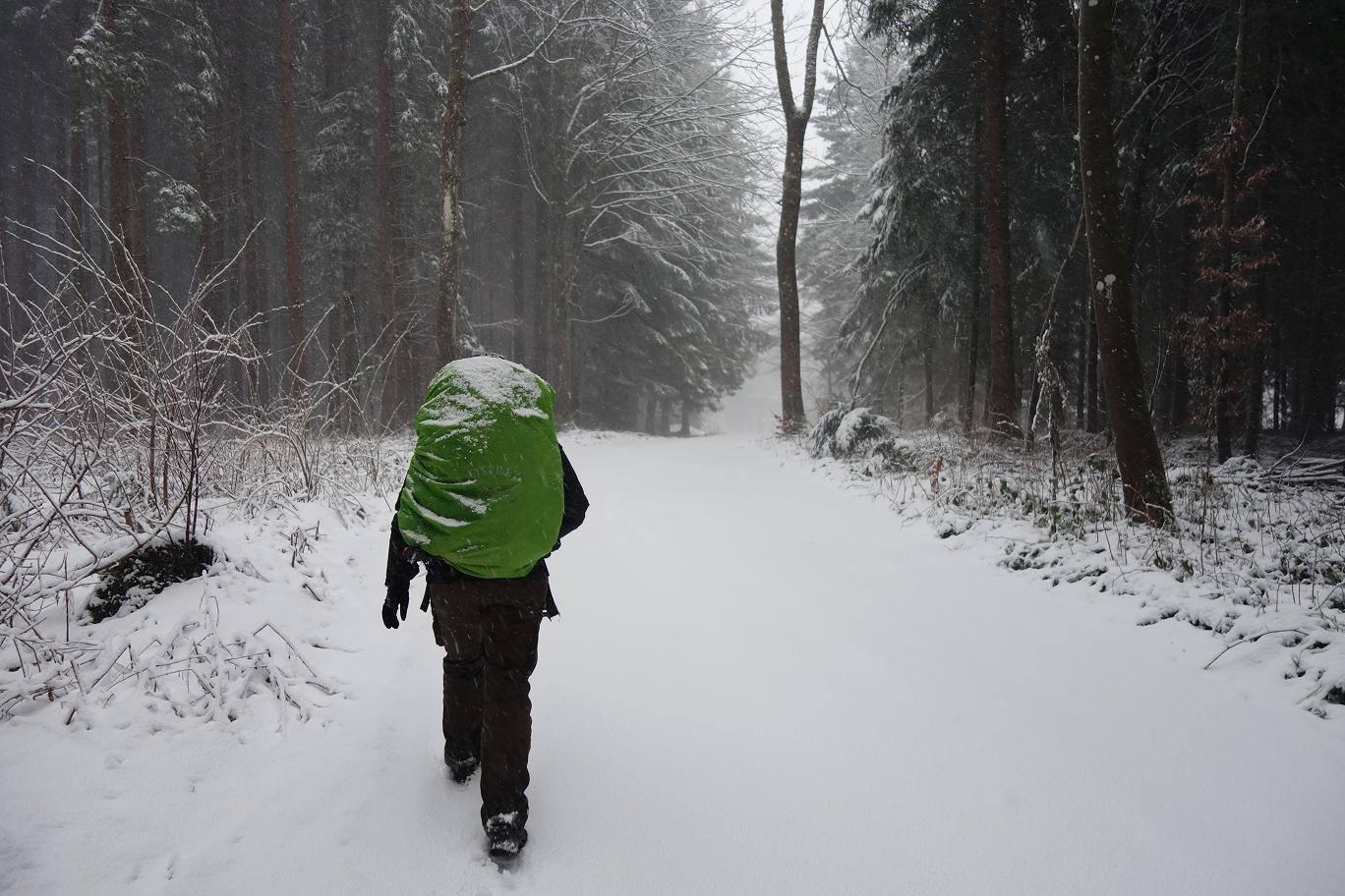 Les Apprentis Vagabonds ont rencontré la neige