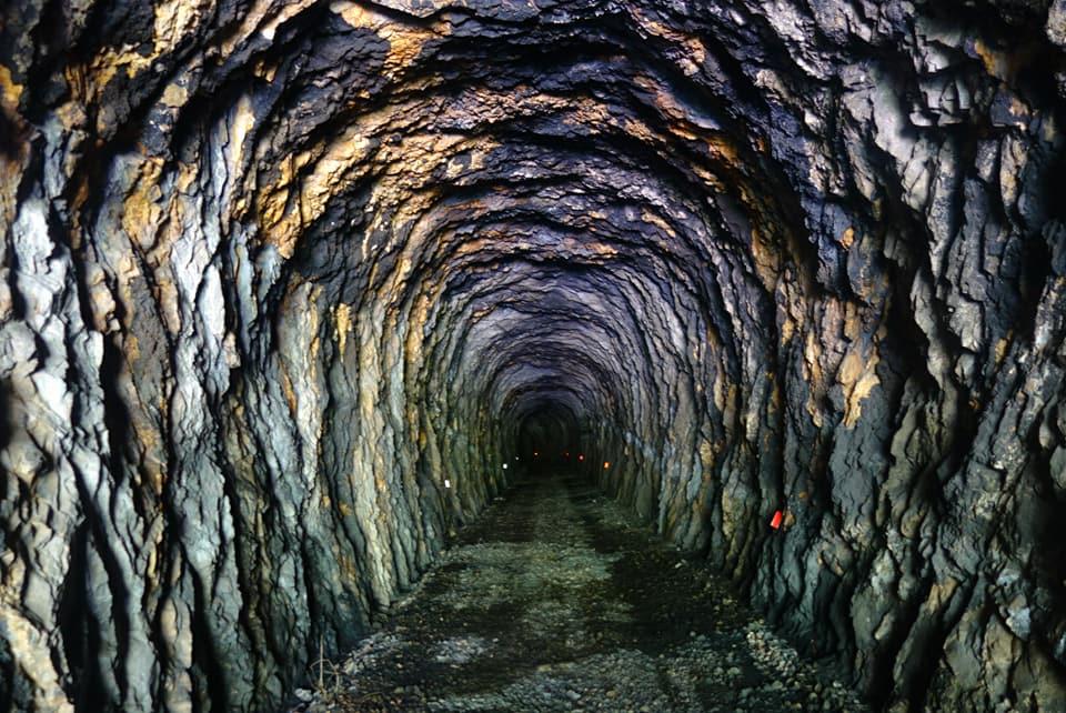 Tunnel peuplé de chauves-souris