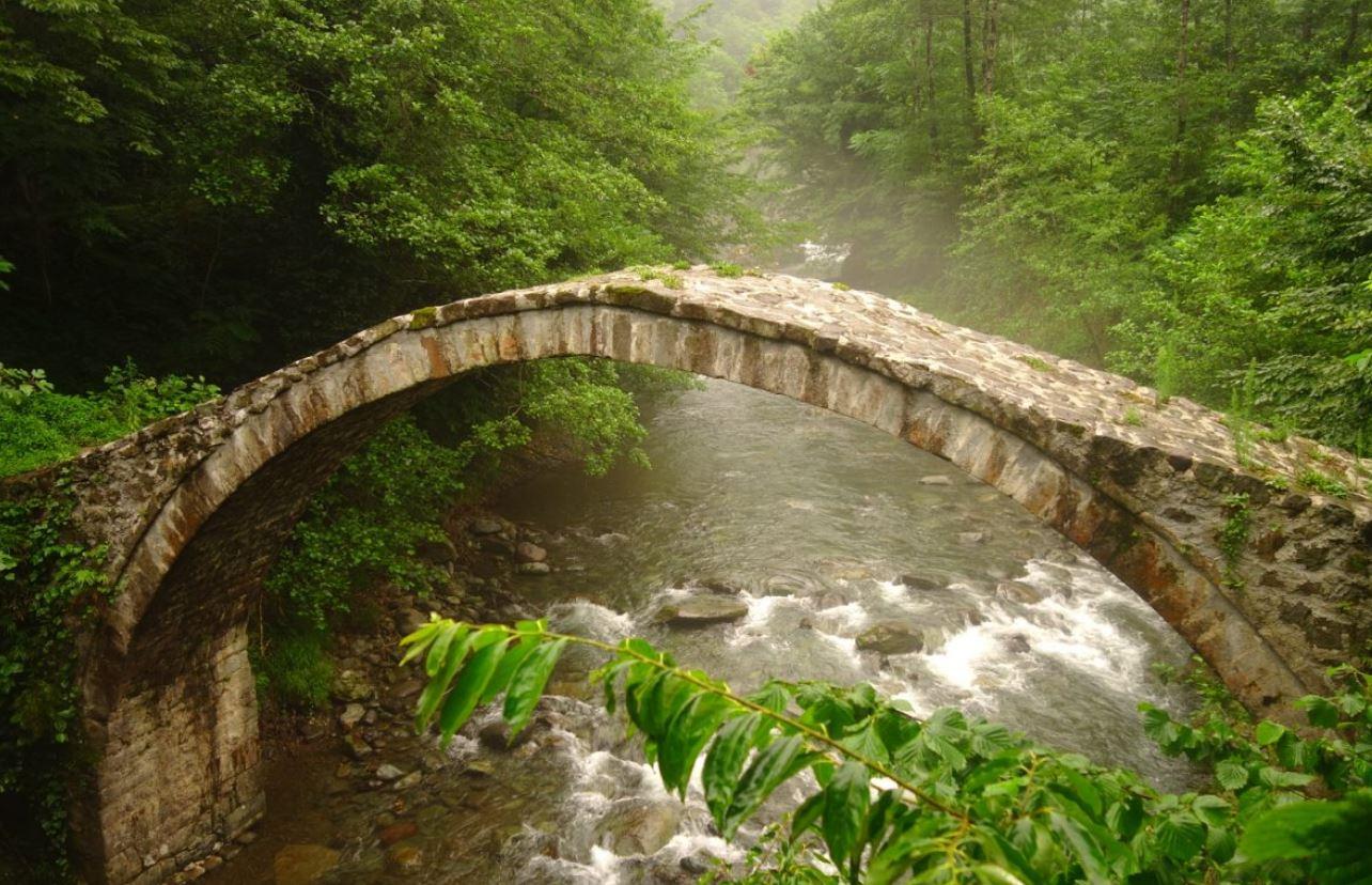 Géorgie - Kintrishi national park