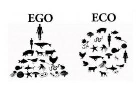 Sommes-nous prêts à changer de mode de vie pour sauver la planète ? Posons-nous cette question d'actualité avec les amis du Chemin du Philosophe.
