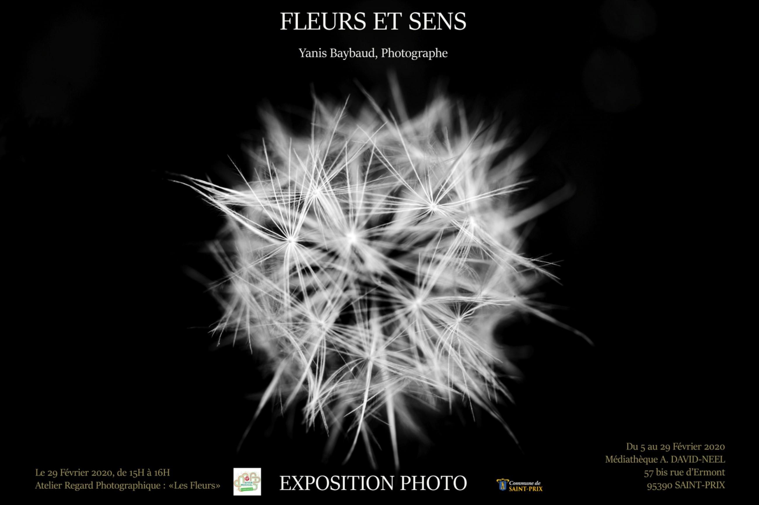 Exposition de Yanis Baybaud