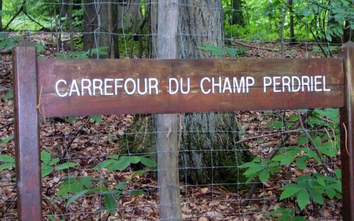 Carrefour du Champ Perdriel