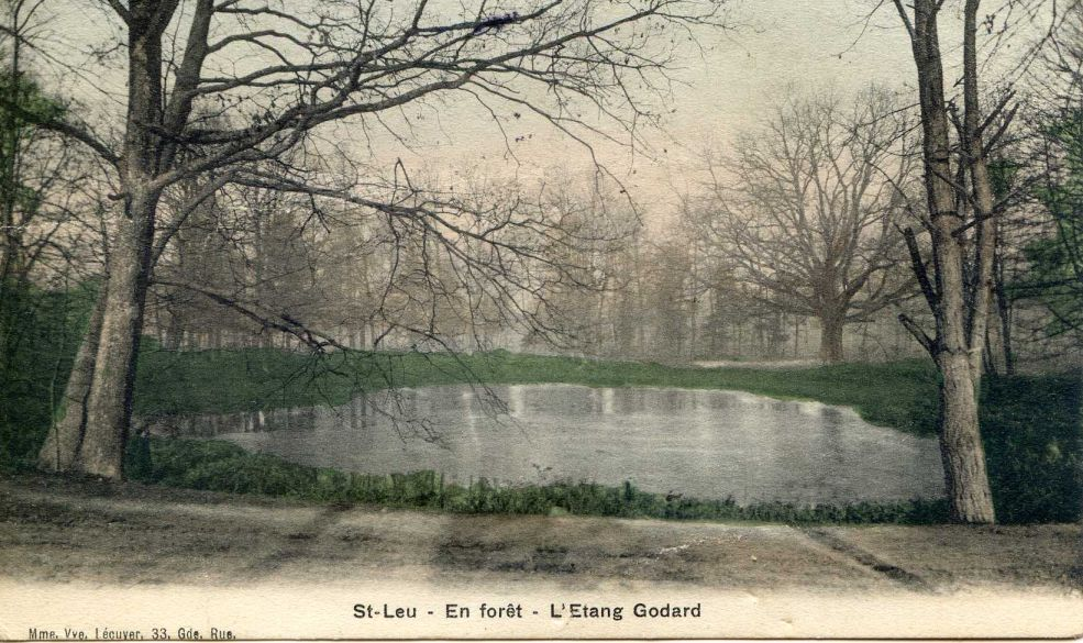 Etang Godard dans la Forêt de Montmorency