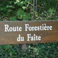 Histoire Forêt de Montmorency > anecdotes sur le nom des chemins, routes et carrefours....