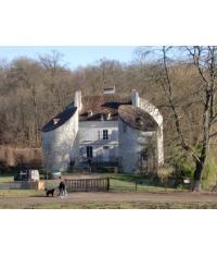 Promenade familiale sur le Chemin du Philosophe dans la Forêt de Montmorency!