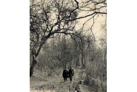 Histoire Forêt de Montmorency> La traversée de la forêt n'était pas sans risques…