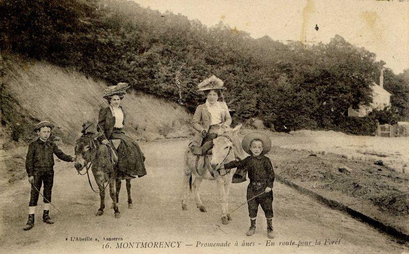 Promenades à dos d'âne - Montmorency