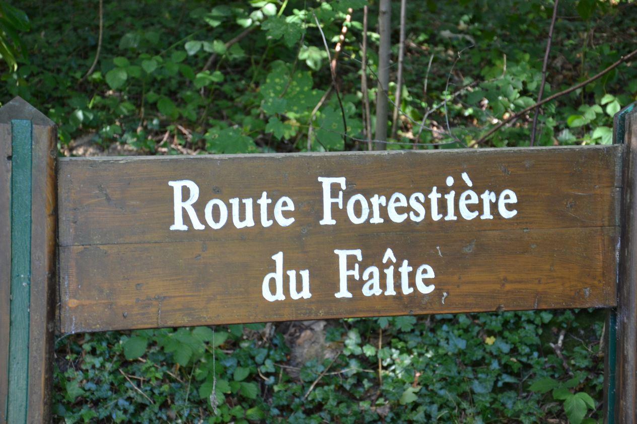 Route forestière du Faîte