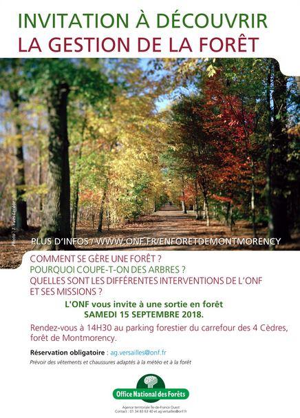 sortie terrain en Forêt de Montmorency - 15 septembre 2018