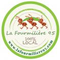 L'entreprise solidaire La Fourmilière 95 souffre pendant cette période du confinement. Interview de sa fondatrice Emilie Ivandekics.