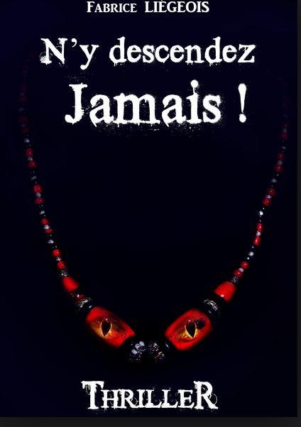 Fabrice Liégeois N'Y DESCENDEZ JAMAIS