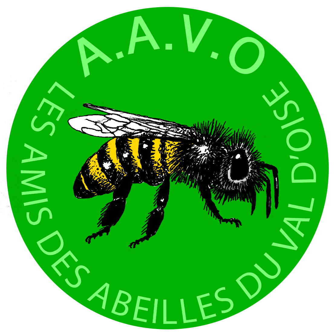 AAVO logo