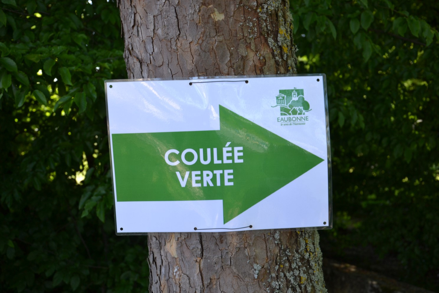 Coulée verte Margency - Eaubonne