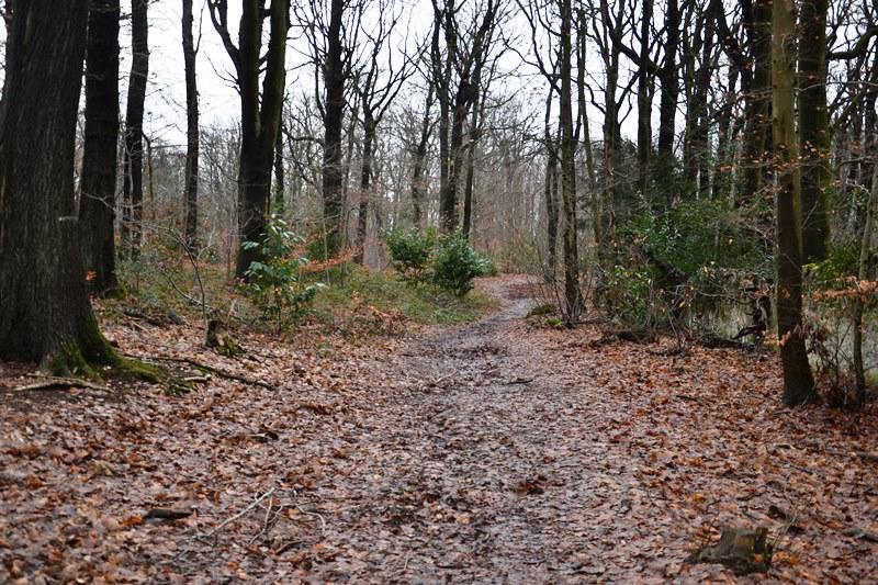 Idée balade Andilly - Forêt de Montmorency