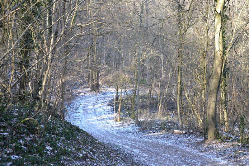 La Montagne de Franconville (fevrier 2021)