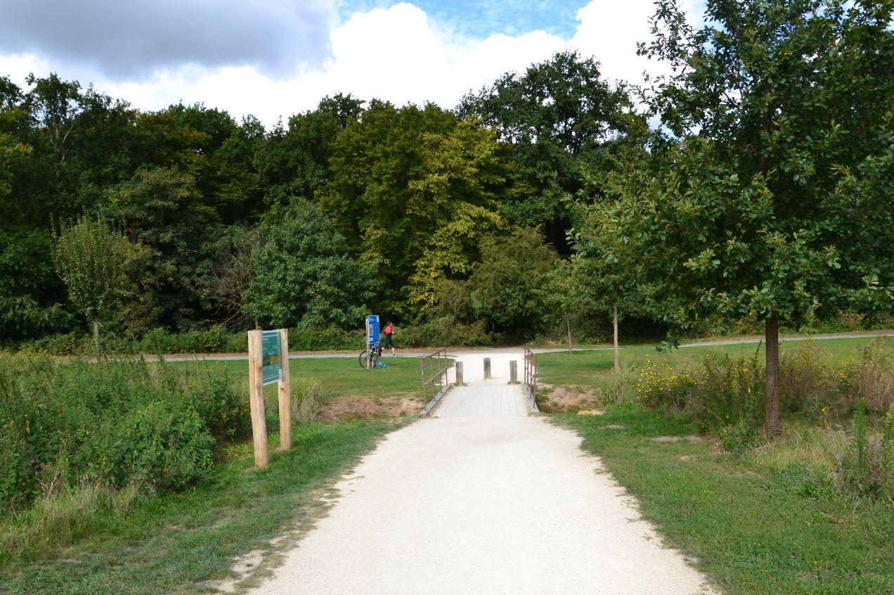Bois de Boissy à Taverny