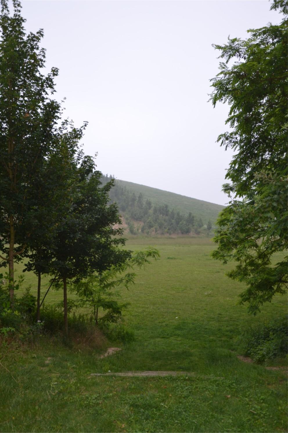 Butte des Chataigniers