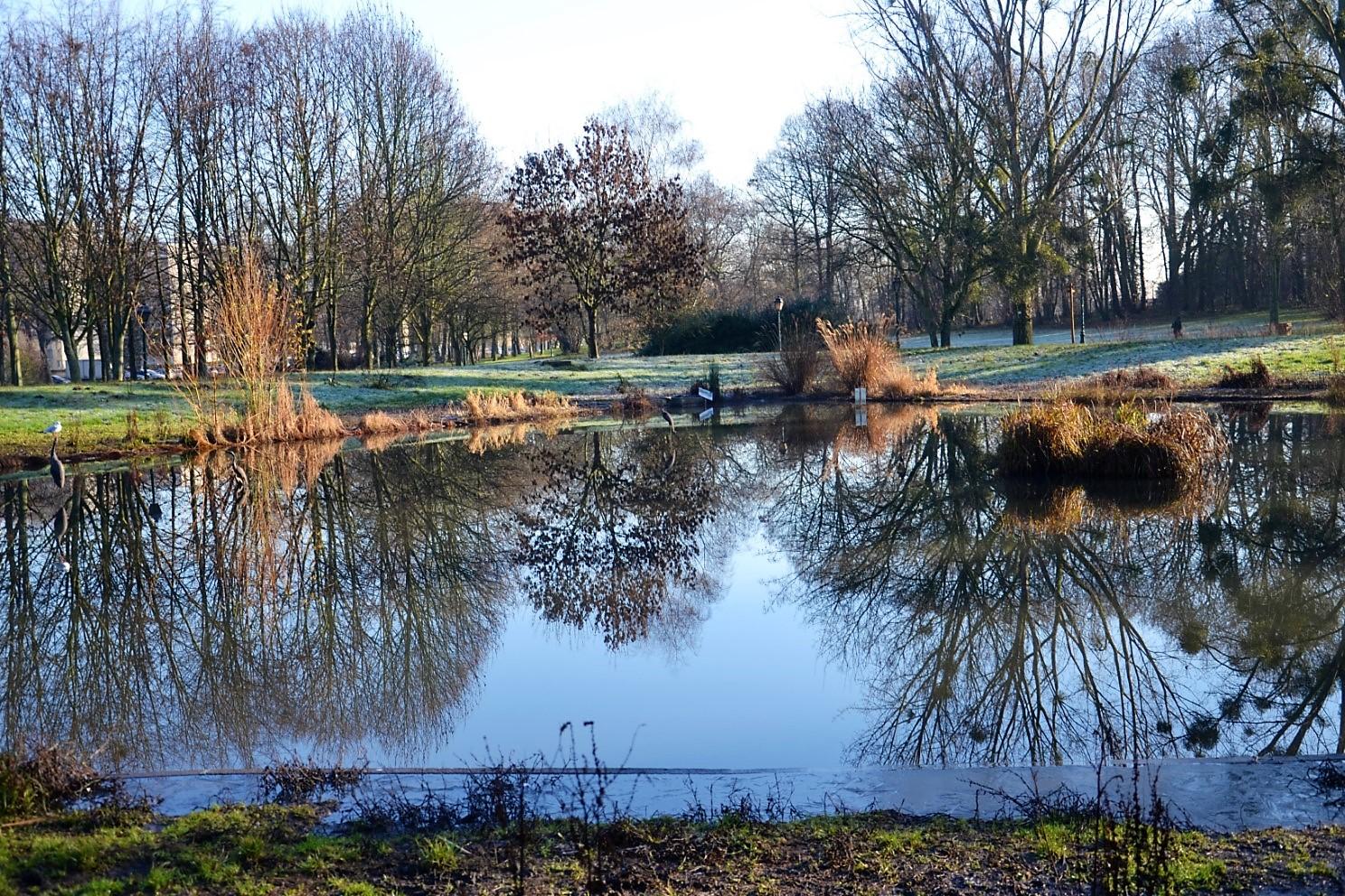 Le Bois des Eboulures à Franconville