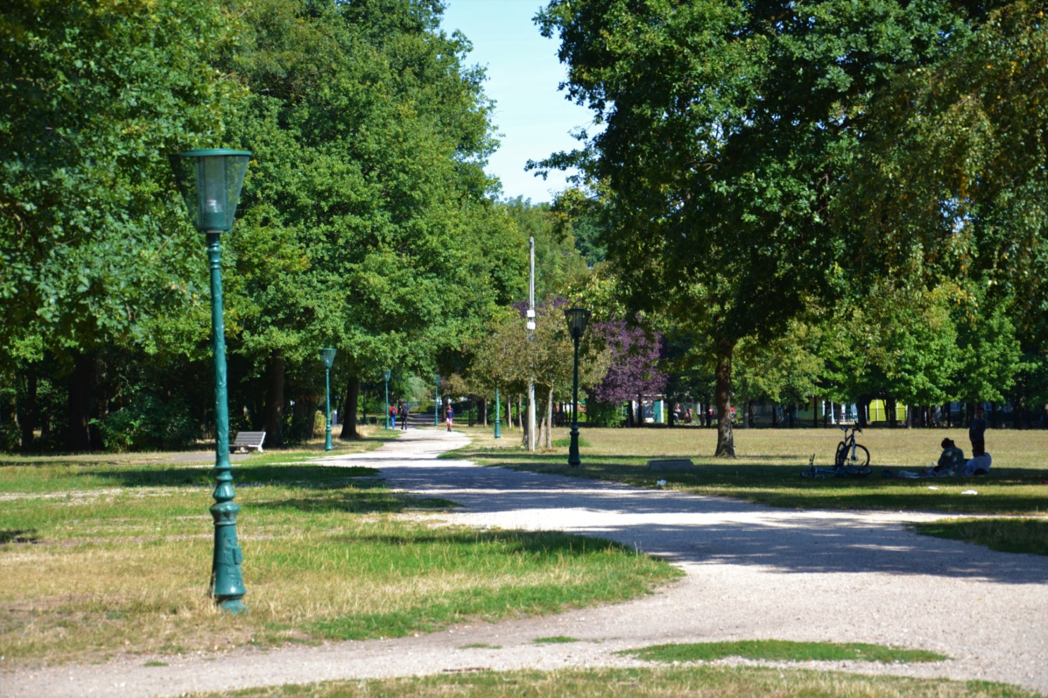 Bois des Eboulures à Franconville