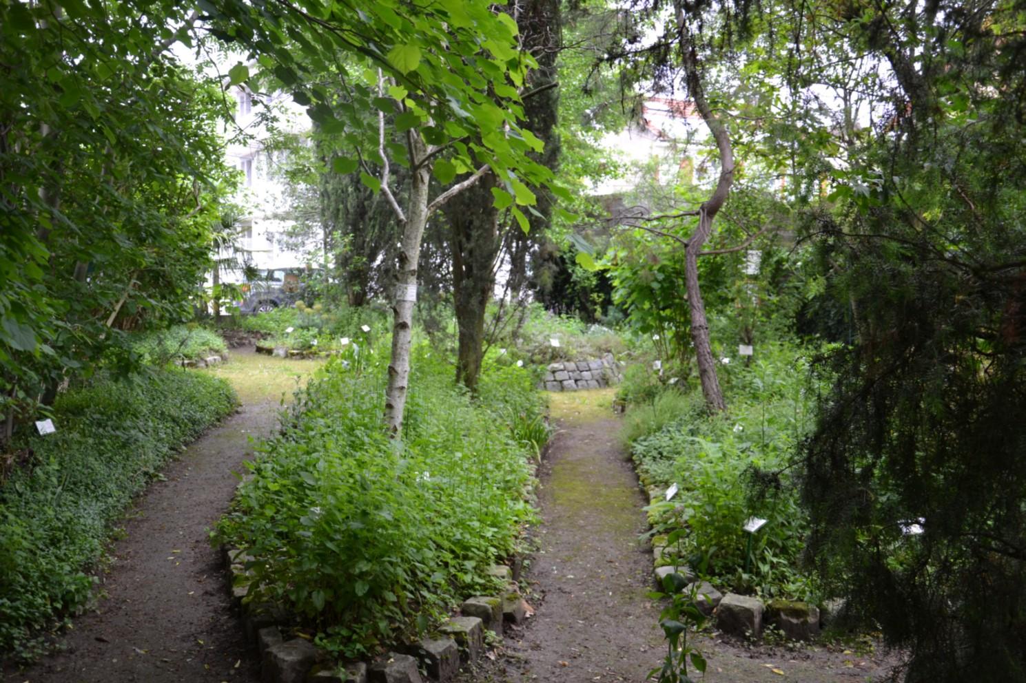 Rendez vous aux jardins ermont eaubonne et sannois for Jardin 400m2