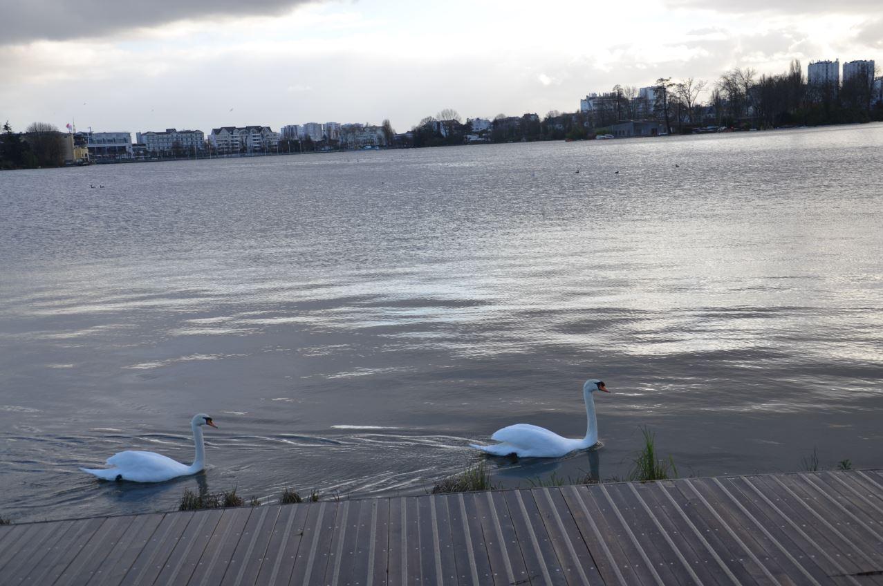 Lac d'Enghien vers la Jetée Eric Tabarly