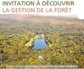 Sortie nature dans la Forêt de Montmorency proposée par l'ONF