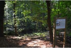 IDEE BALADE: sur les pas de la reine Hortense… à Saint-Leu-la-Forêt