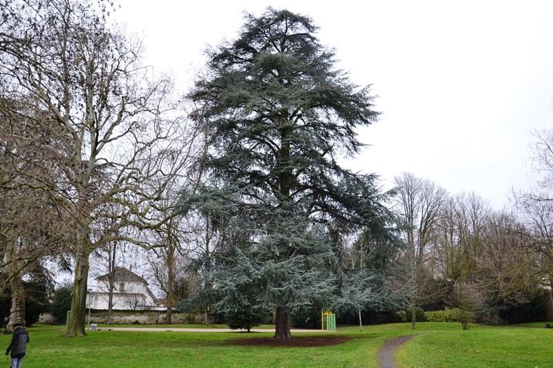 Parc de la Tuilerie à Margency