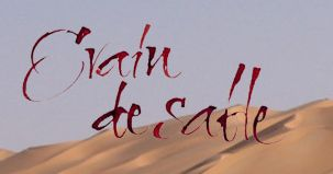 LOGO GRAIN DE SABLE