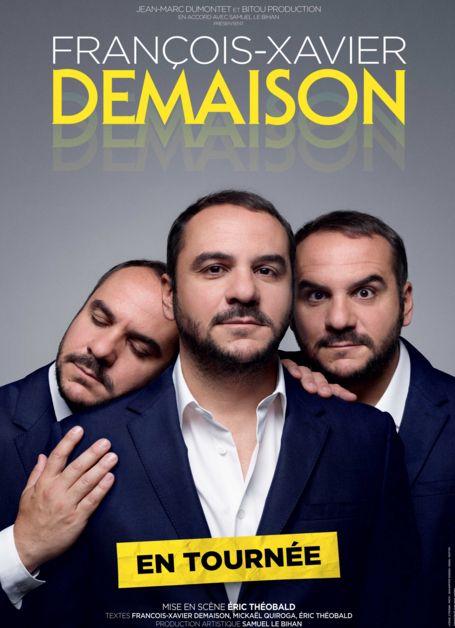 One man show de François-Xavier Demaison