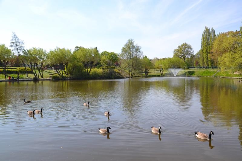 Le bassin des Moulinets à Eaubonne (avril 2021)