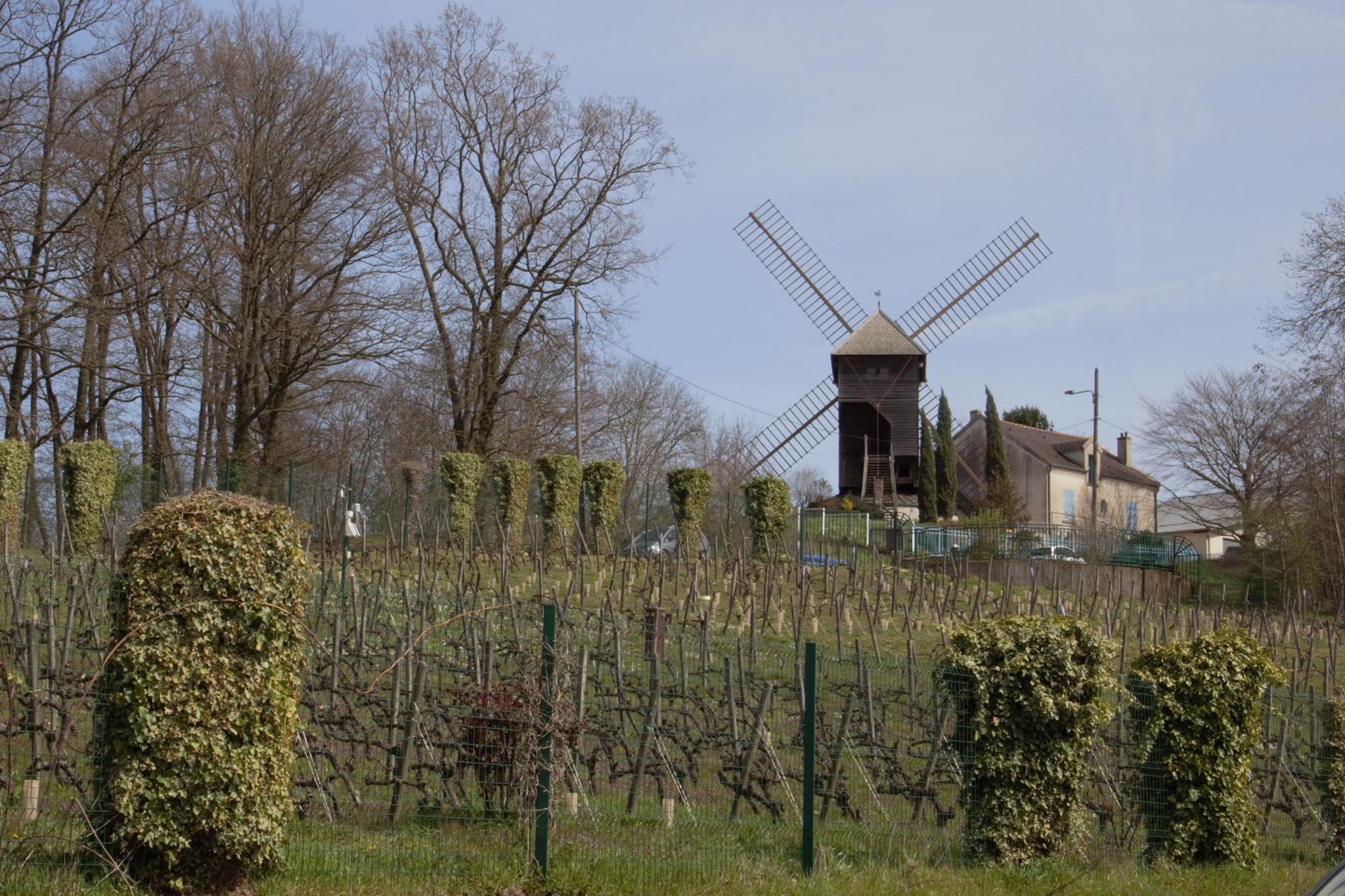 Moulin de Sannois (mars 2021 - photo de Patrick Danielou)