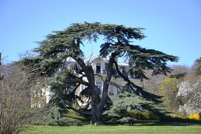 Parc public du Château de la Tuyolle (Hôpital du parc) à Taverny (mars 2021)