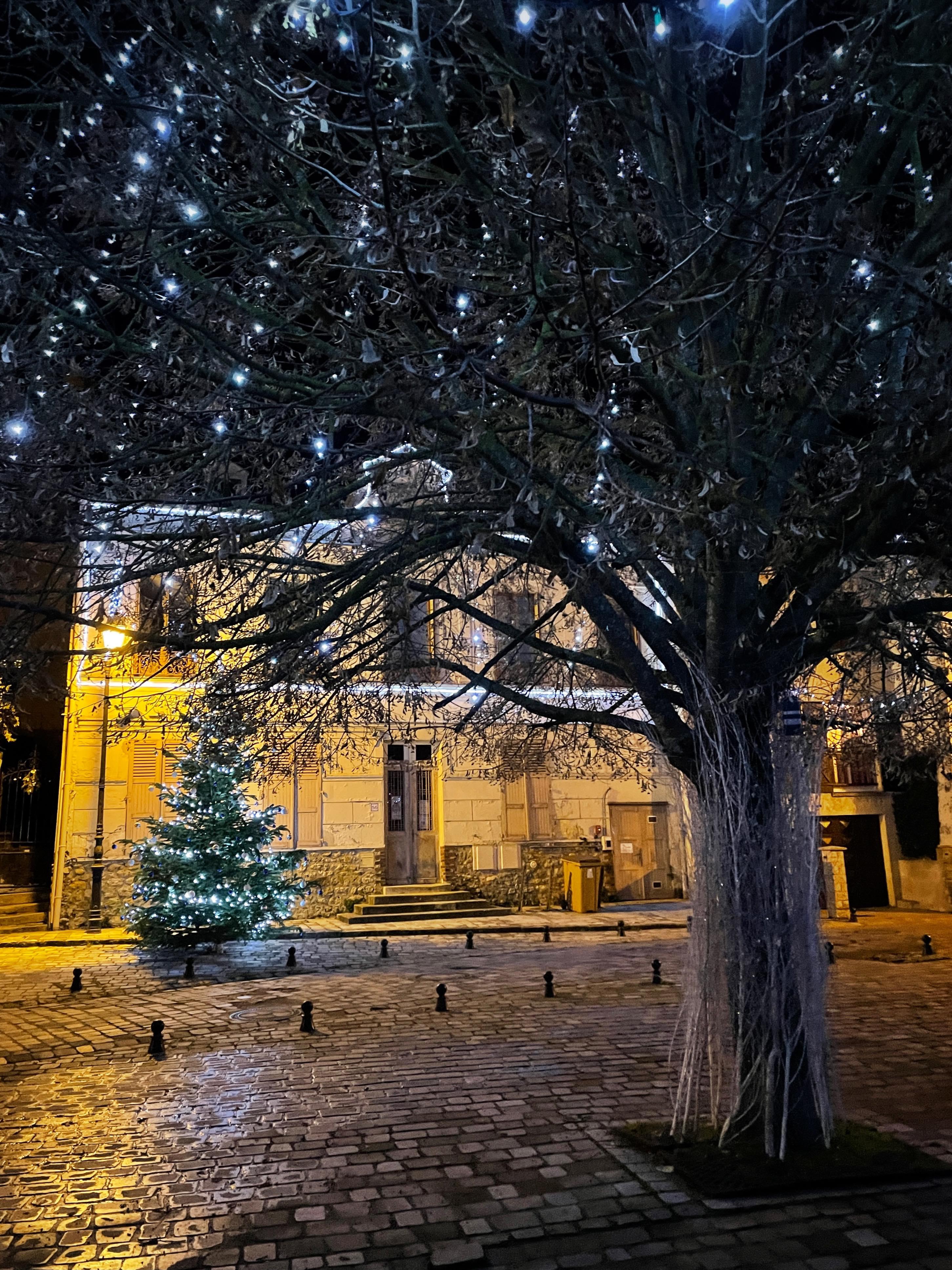Place de la Fontaine aux pélerins à Saint-Prix (décembre 2020 - photo de Christophe Séfrin)