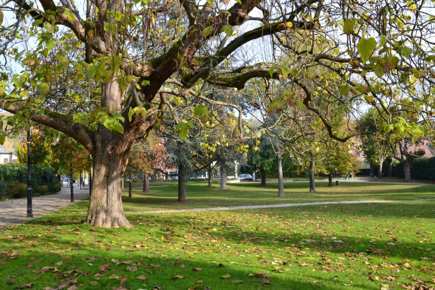 Novembre 2018 - parc Marcel Glo à Groslay
