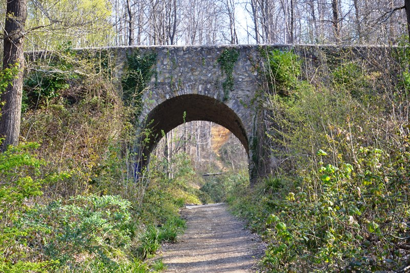 Le pont du diable dans la Forêt de Montmorency (avril 2021)